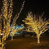 LED гірлянда 8 режимів 10м 100LED тепле світло, фото 4