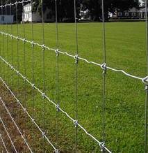 Шарнирная Сетка ДФЛ - для ограждений металлическая оцинкованная