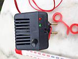 Электронный терморегулятор в инкубатор с градусником , фото 2