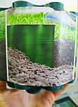 Бордюрна стрічка пластикова 9м х 15см хвиляста Bradas Польща, фото 6