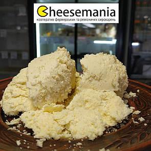 Сир бринза люта Закарпатська овеча 300г
