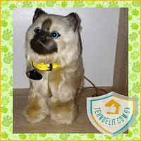 🐱 Интерактивная кошка сиамская кошечка котик киця ходит игрушка: ПОДАРКИ ДЕТЯМ НА ДЕНЬ РОЖДЕНИЯ