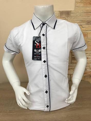 Детская белая рубашка с коротким рукавом, 11-16 лет (4045-01), фото 2