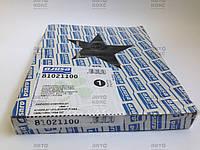 Болты ГБЦ Ajusa 81021100 на Daewoo Lanos1.4,1.5, Nexia1.5, Tacuma1.8, Chevrolet Aveo1.5, Kalos1.4. ., фото 1