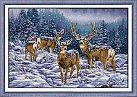 Олени в зимнем лесу DA267 Набор для вышивания крестиком с печатью на ткани 14ст
