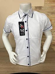 Детская белая рубашка с коротким рукавом, 5-8 лет (4045-02)
