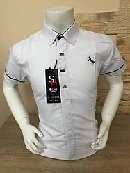 Детская белая рубашка с коротким рукавом, 5-8лет