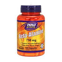 Бета-аланин NOW Beta-Alanine 750 mg (120 caps)