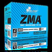 ZMA Цинк Магний Аспартат Olimp ZMA (120 caps) повышение тестостерона