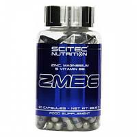 ZMA Цинк Магний Аспартат Scitec Nutrition ZMB6 (60 caps) повышение тестостерона