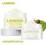 Увлажняющий крем для лица с экстрактом черники BIOAQUA Wonder Essence Cream 50 ml, фото 5