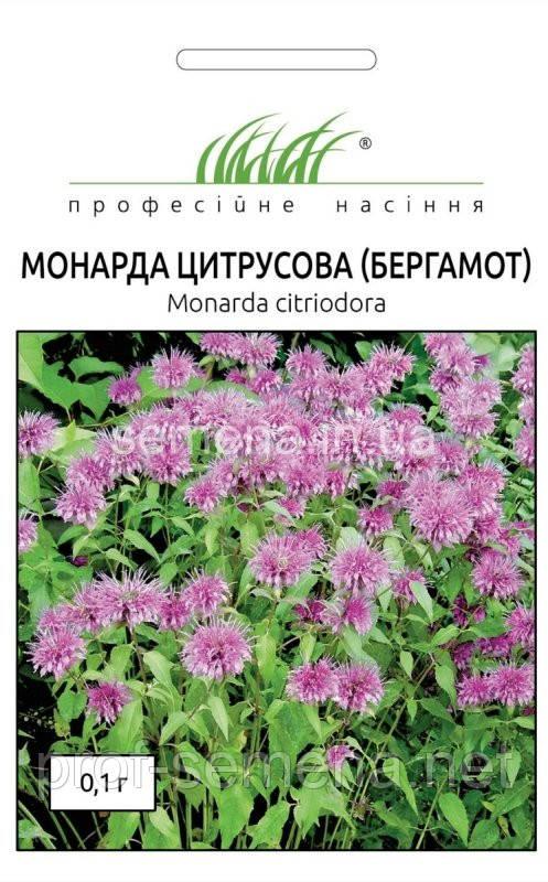 Бергамот (Монарда цитрусова) 0,1г.