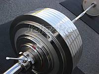 Диски блины для пауэрлифтинга Динамо профессиональные, сталь, хром, на грифы 50 мм, фото 1