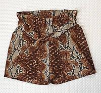 Шорты для девочки принт р.128-146 коричневый, фото 1