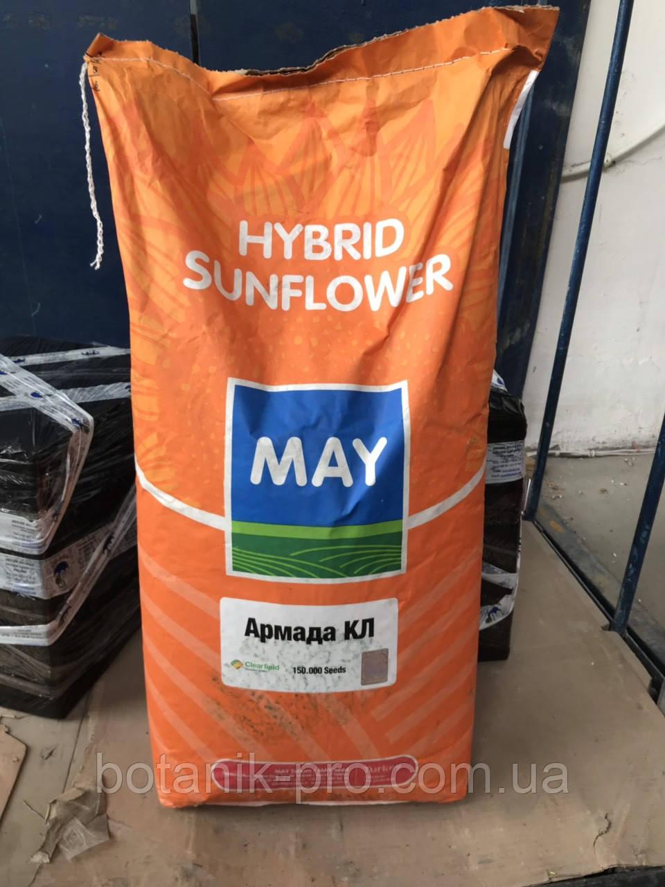 Семена подсолнечника Армада под Евролайтнинг