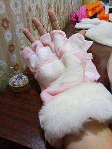 Перчатки котика