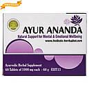 Аюр Ананда (Holistic Herbalist) - баланс центральной нервной системы, 60 таблеток, фото 4