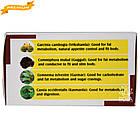 Аюр Форма (Holistic Herbalist) - аюрведа преміум (зниження надмірної ваги), 60 таблеток, фото 3