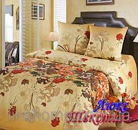 Комплект постельного белья Top Dreams Cotton Тайна семейный