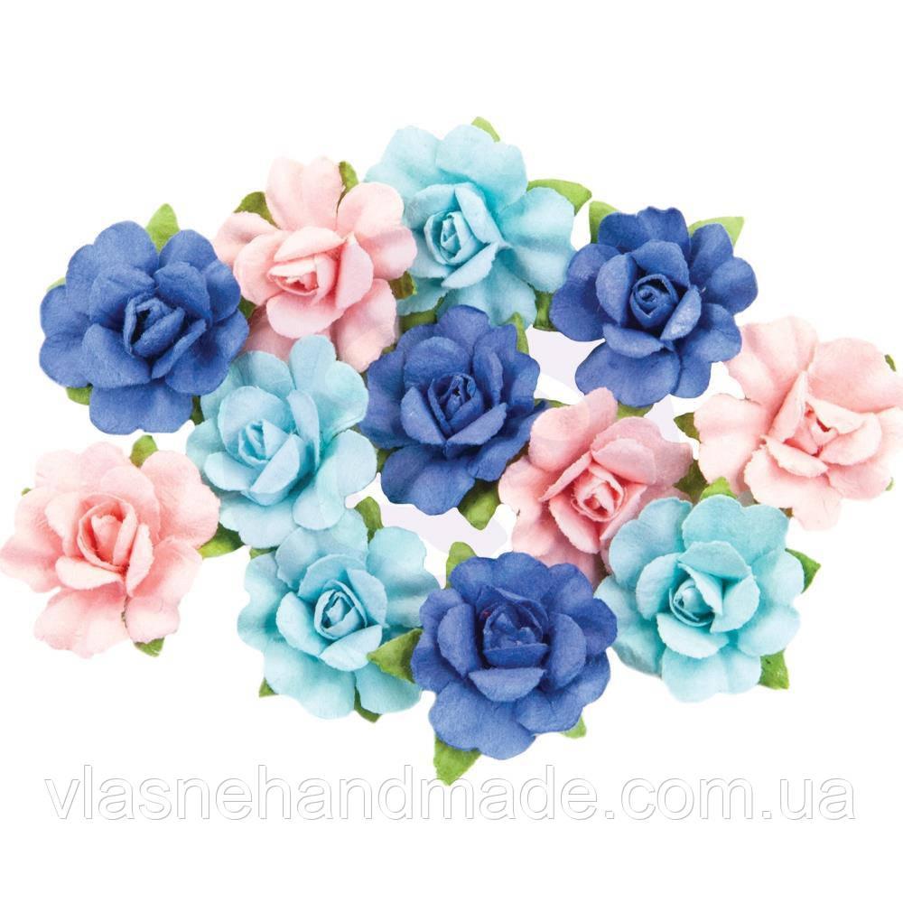 Квіти - Malibu Paradise - Golden Coast - Prima Marketing - 12 шт.
