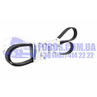 Поліклинові ремінь FORD TRANSIT 2001-2006 (2.0 TDCI 6PK1640 +AC) (1206466/2C1Q6C301AA/1206466) ORIGINAL