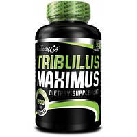 Повышающий тестостерон BioTech USA Tribulus Maximus 90 кап