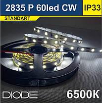 Світлодіодна стрічка SMD 2835, 60 шт/м, 6500К (Холодний Білий)