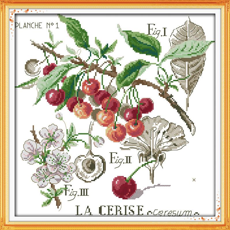 Ботаника. Вишни. J231 Набор для вышивки крестом с печатью на ткани 14ст
