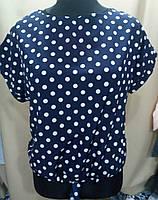 Блуза в горошек женская батальная (ПОШТУЧНО)