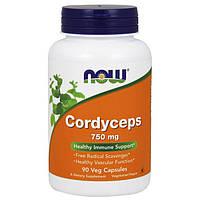 Органический Кордицепс NOW Cordyceps 750 mg 90 veg caps