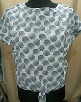 Блуза с кружочками женская батальная (ПОШТУЧНО)
