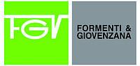 Направляючі фірми FGV
