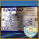 Насос центробежный Pedrollo JSWm 1AX Оригинал. Италия. Насос водяной. Насос для воды., фото 5