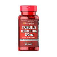 Повышение тестостерона Puritan's Pride Tribulus Terrestris 250 mg 90 caps