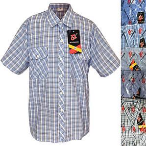 Мужская рубашка короткий рукав батал