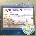 Насос центробежный Pedrollo JSWm 2AX Оригинал. Италия. Насос водяной. Насос для воды. Насосная станция., фото 7