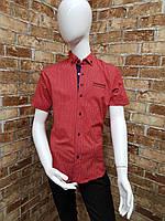 Рубашка детская с коротким рукавом для мальчика от 6 до 11 лет красная с синим, фото 1