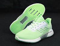 Кроссовки женские Adidas Climacool 31264 светло-зеленые, фото 1