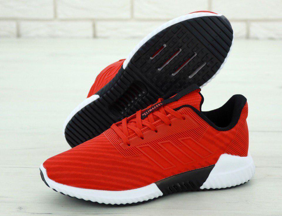 Кроссовки мужские Adidas Climacool 31261 красные