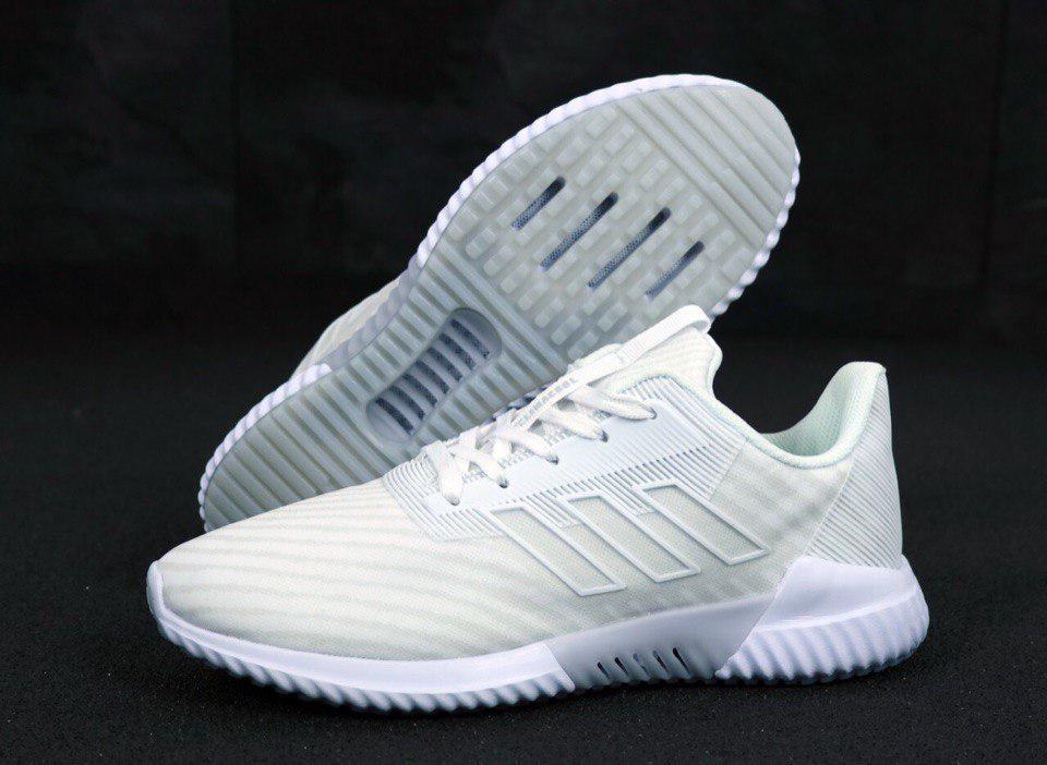 Кроссовки мужские Adidas Climacool 31265 белые
