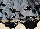 Комплект двойка реглан и юбка кот летучая мышь H&M (Англия) (Размер 6-8Т), фото 7