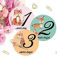 Baby Stickers, Наклейки для домашней фотосессии №29