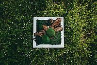 """Набір Картина Зроби Сам """"Карпати"""" 300*300 мм, фото 4"""