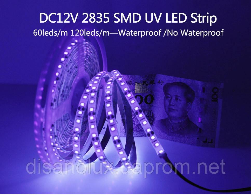 Светодиодная LED лента UV 2835 60LED/м  300LED 4,8W/м ультрафиолет 12V IP20
