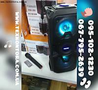 Портативная колонка TMS-601 + радиомикрофон, фото 1