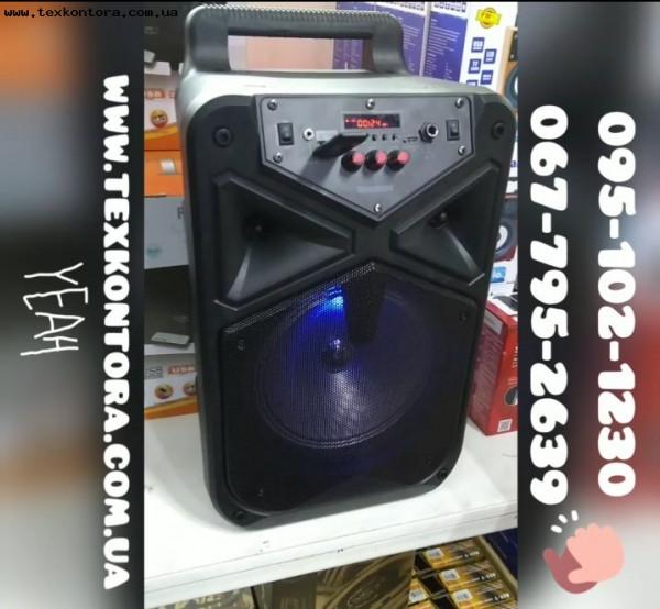 Мобильная акустическая система TMS-806 с микрофоном