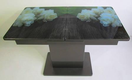 Кухонный МДФ стол Готье 02 Eurostek, фото 2