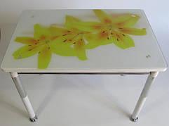 Стол кухонный на металлических ножках со стеклянной столешницей Камилла нераздвижной премьер 9 Eurostek