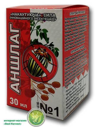 Инсектицид «Аншлаг» 30 мл, оригинал, фото 2