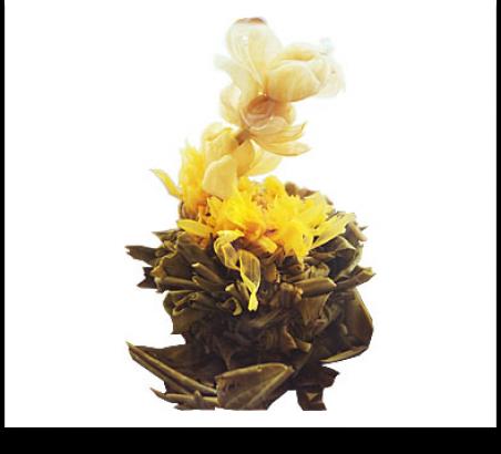 Белый чай Косточка сливы (минимальная отгрузка 0,5 кг)
